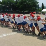 綱引きが東京オリンピックの種目に?何人で戦うの?競技人口は?