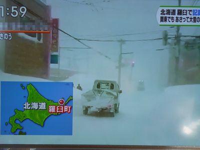 2月2日の羅臼町の猛吹雪の様子、ひるおび!の放送から