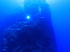 孀婦岩の海底の様子