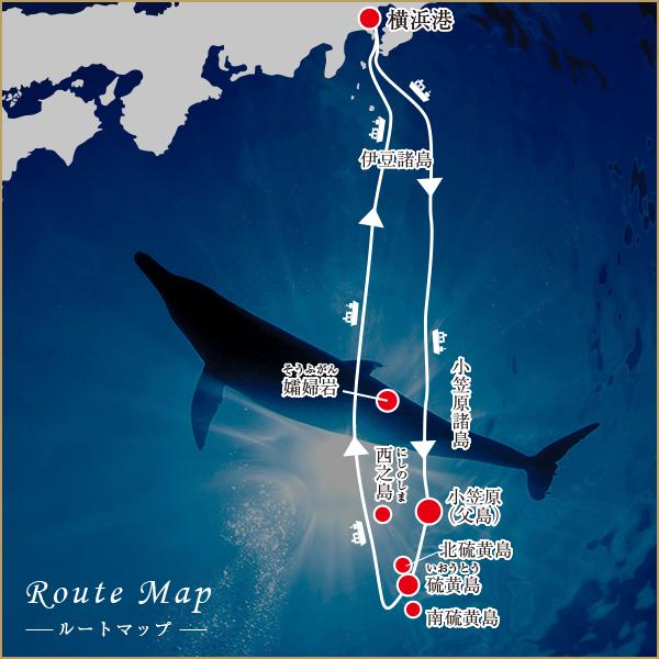 にっぽん丸で行く小笠原クルーズのマップ